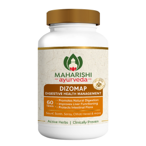 Maharishi Dizomap